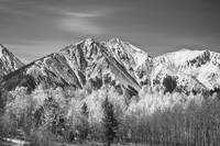 Rocky Mountain Autumn High In Black and White