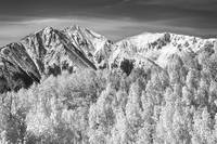 Colorado Rocky Mountain Autumn Magic BW