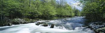 Little Pigeon River Greenbrier Area Great Smoky M