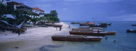 Dhows moored on the beach