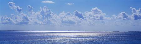 Shimmering Seascape Florida Keys FL