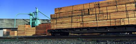 Timber being loaded in a freight train