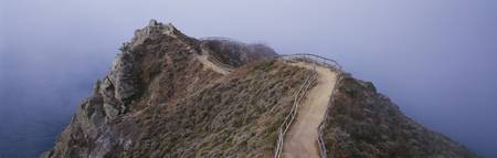 Path Overlooking Coastal Cliff CA