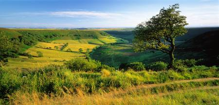 Hole of Horcum N Yorkshire Moor England
