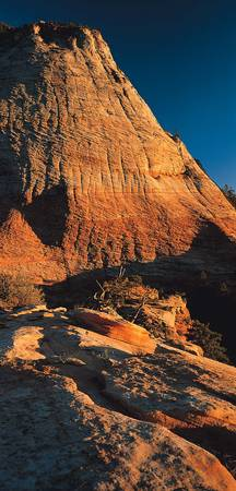 Checkerboard Mesa Zion National Park UT