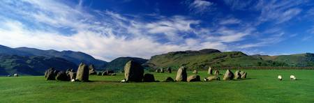 Sheeps Grazing In A Pasture Castlerigg Stone Circ