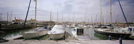 Boats moored at a harbor