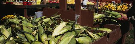 Corncobs in a market stall