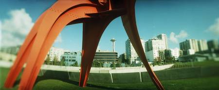 Sculpture in a park Olympic Sculpture Park Seattl