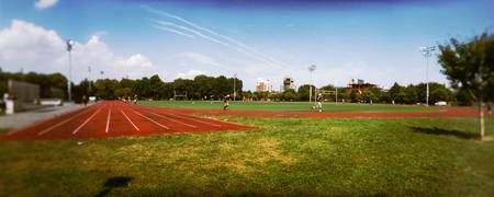 Running track in a public park McCarren Park Gree