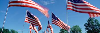 Low angle view of fluttering American flags