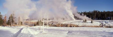 Winter Upper Geyser Basin Yellowstone National Pa