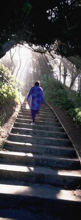 Woman Ascending Stairs OR