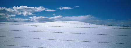 Barbed wire fence in a snow covered landscape