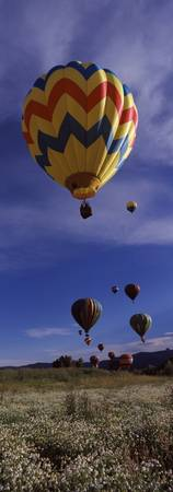 Hot air balloons rising Hot Air Balloon Rodeo Ste