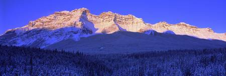 Morning Light Banff National Park Alberta Canada