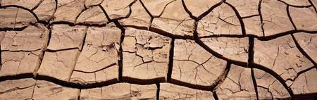 Close-up of cracked earth