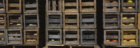 Crates of gourds and pumpkins
