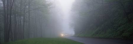 Car in mist Great Smoky Mountains National Park T
