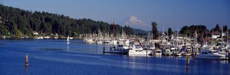 Gig Harbor Mount Rainier Pierce County WA
