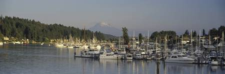 Gig Harbor Mount Rainier WA