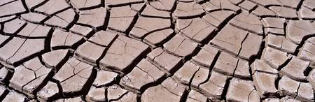 Close-up of cracked mud