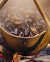 Close-up of mussels steaming in a kettle