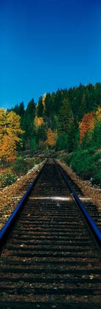 Railroad Tracks British Columbia Canada
