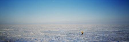 Solitary person on vast arctic plain