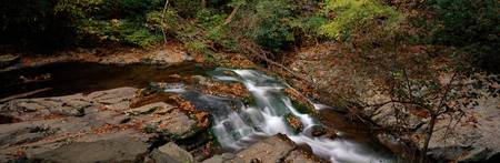 White Water The Great Smoky Mountains TN