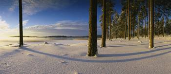 Panoramic view of a lake in winter