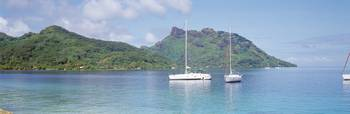 Sailboats in the sea Tahiti Society Islands Frenc