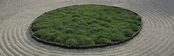 High angle view of a Japanese garden