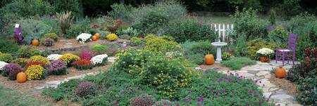 Fall Residential Garden