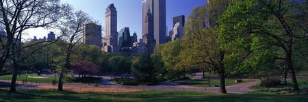 Central Park Midtown New York City NY