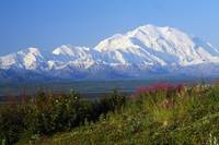 View of snow-covered Mount McKinley from Denali N