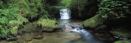 Waterfall in a forest Watersmeet North Devon Devo