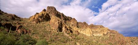 Hewitt Canyon Tonto National Forest AZ