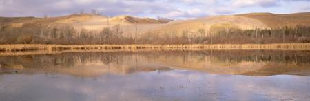 Panoramic view of a pond