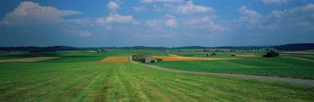 Hay fields Bavaria Germany