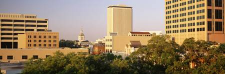 Skyline and Capitol Building Tallahassee FL