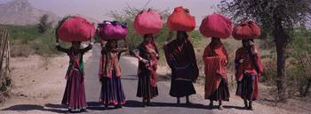 Women standing on a road with luggage on their he
