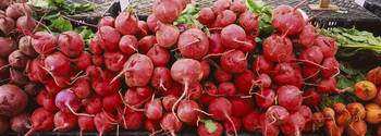 Close-up of radishes at a market stall