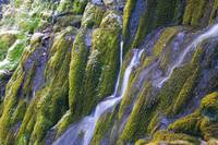 Water streaming down moss-covered cliffs