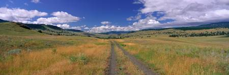Cattle Ranch Road near Merritt British Columbia C