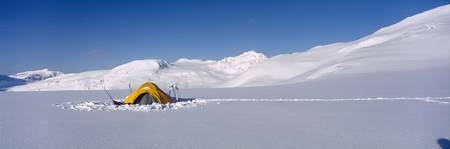 Camping tent on a polar landscape