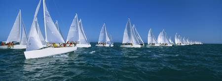 Yacht Race Key West FL