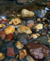 Rocks in shallow Oak Creek