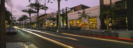 Stores on the roadside Rodeo Drive Beverly Hills