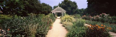 Garden path leading towards gazebo